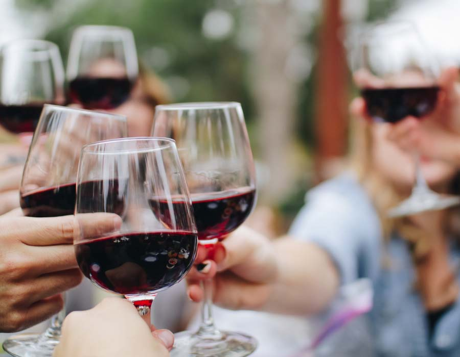 The Niagara Homegrown Wine Festival 2019