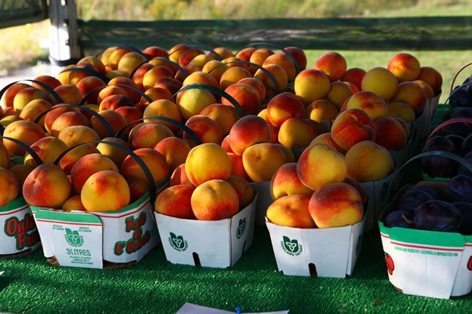 The Niagara-on-the-Lake Peach Festival